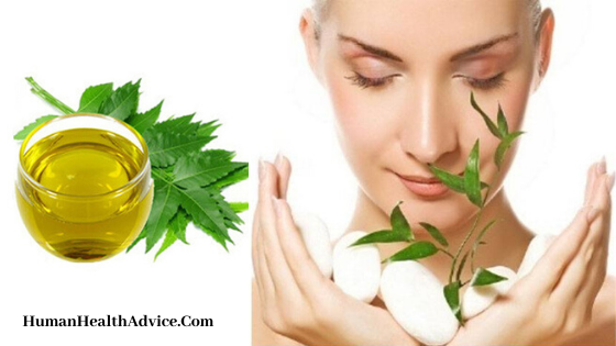 benefits-of-neem-oil-for-skin-and-hair